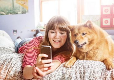 Aplicaciones para mascotas: cómo cuidar perros y gatos
