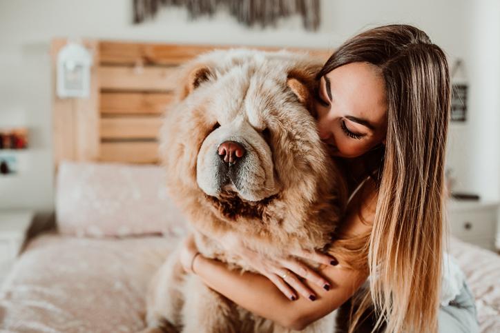 Algunas personas aman más a los perros