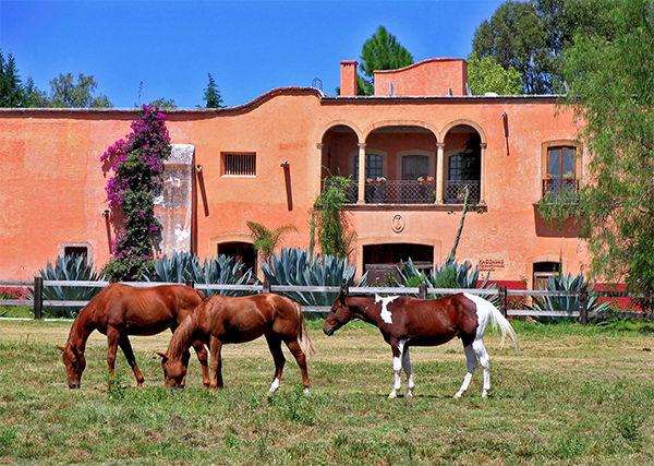 Hacienda Sepulveda