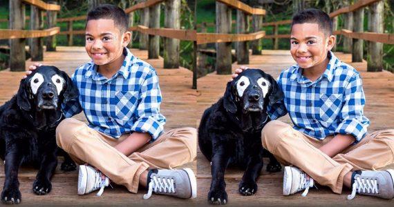 perro vitiligo