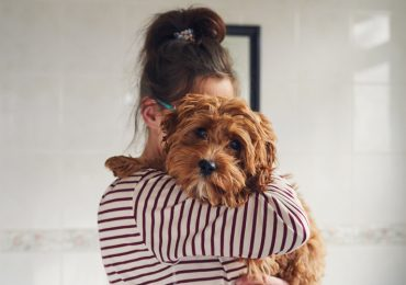nombres-de-perro-populares