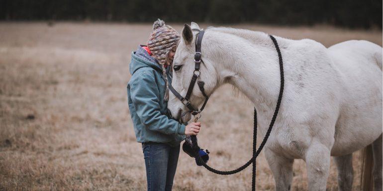 constelaciones-familiares-con-caballos