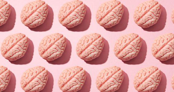 estrés-afecta-cerebro
