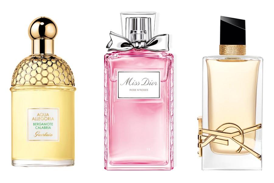 perfumes y su influencia en aromas