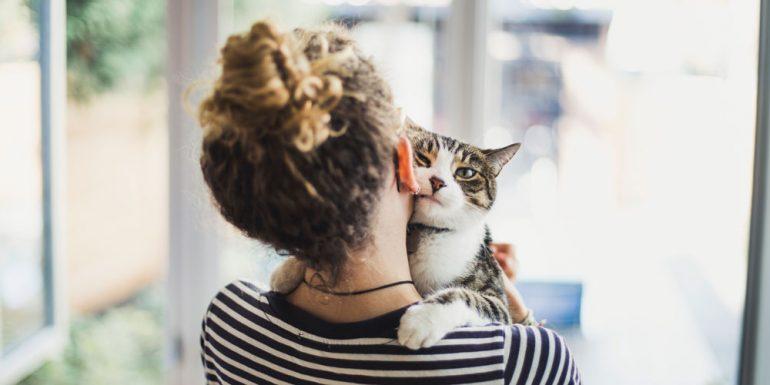 tu-personalidad-influye-en-la-de-tu-gato