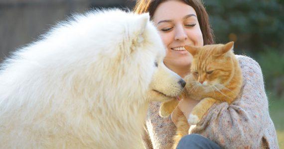 Tener mascota ayudó a mantener una mejor salud mental durante el confinamiento