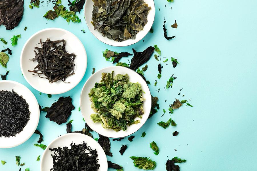 ¿Son tan beneficiosas las algas como creemos? Mitos y realidades. (Foto: Getty Images)