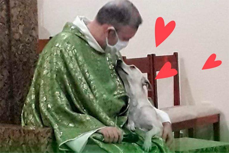 Este sacerdote busca hogar a perritos de la calle en misa, conoce la historia