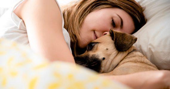 Tu perro de verdad podría estar enamorado de ti, lo dice la ciencia