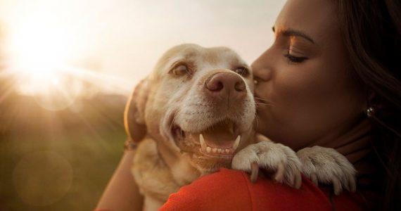 ¿Le hablas a tu perro? Qué bueno porque él te entiende, lo dice la ciencia