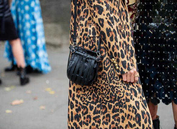 ¿Fan del animal print? Proponen 'pagar' derechos al leopardo por imitar su piel