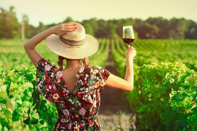 ¿Quieres trabajar y vivir en un viñedo? Esta bodega en California pagará 10,000 dólares