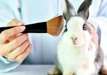 mexico prohibe ley cosmeticos pruebas animales