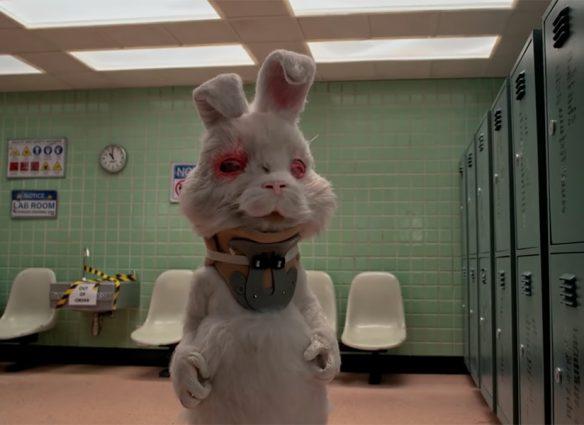 """Zac Efron nos hace llorar con """"Save Ralph"""", un corto contra las pruebas cosméticas en animales"""